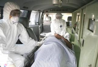 pandemie gripa