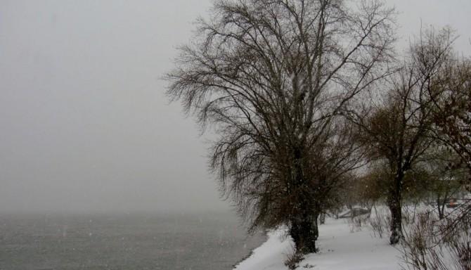 dunarea iarna