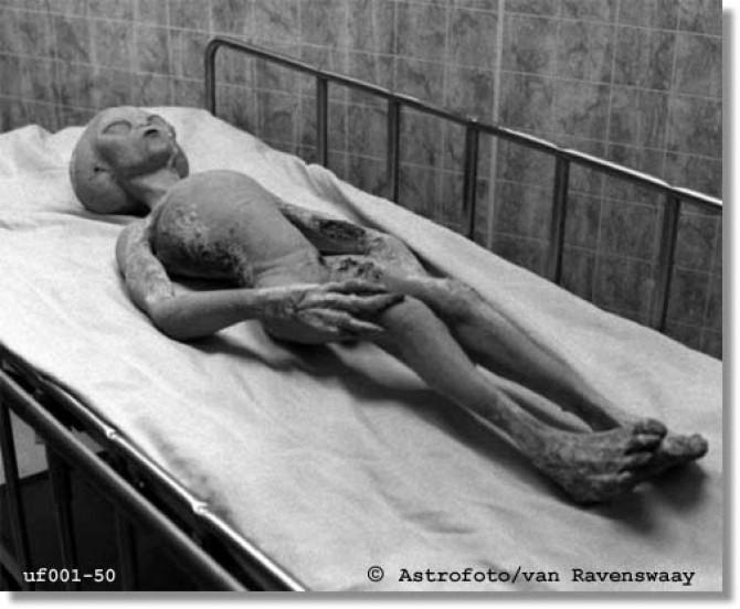 Angeblicher Alien Fund bei Roswell, New Mexico (USA)