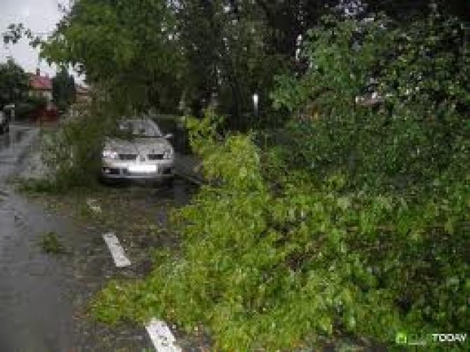 furtunile au făcut ravagii