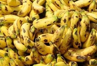 banane-afp
