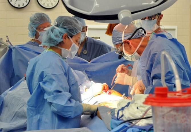 transplantat