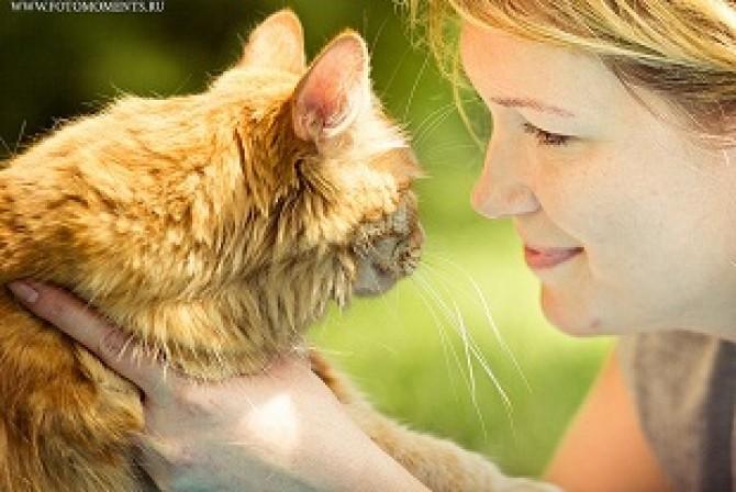 Prezenţa pisicilor în casă creşte riscul de sinucidere printre femei