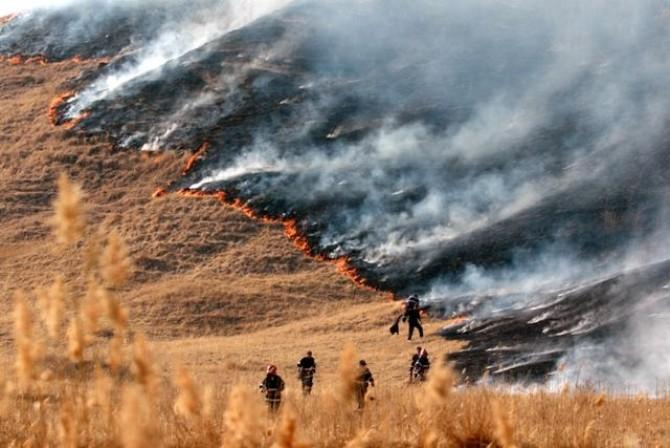 Incendii de vegetaţie în zece judeţe peste 115 hectare de vegetaţie uscată şi fond forestier afectate