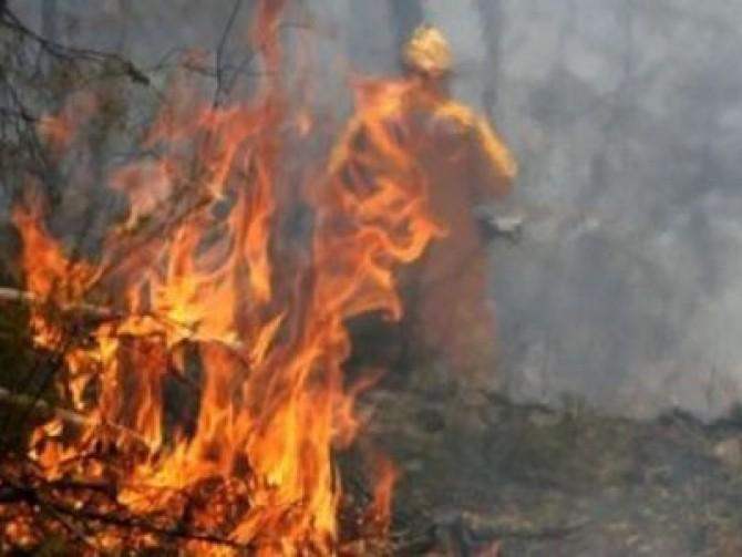 Incendiu puternic la o tipografie din Craiova