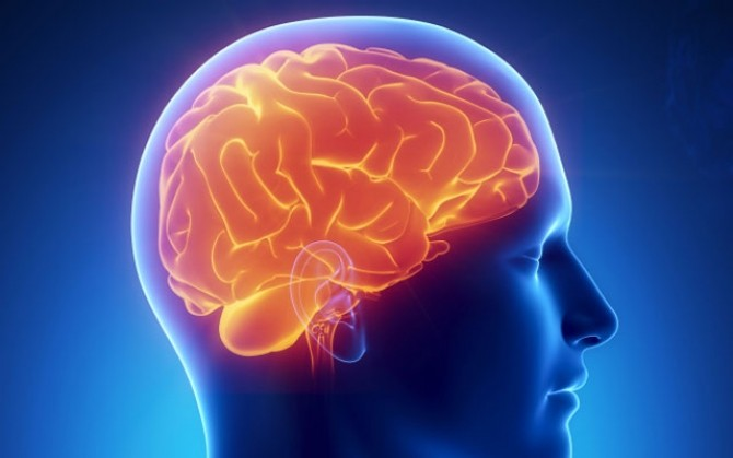 vicarious: software-ul asemanator creierului uman