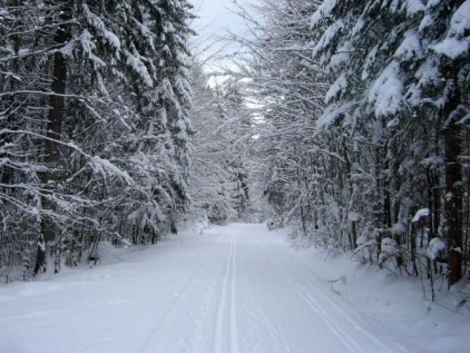 zapada-iarna-