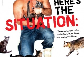 20.the-situation