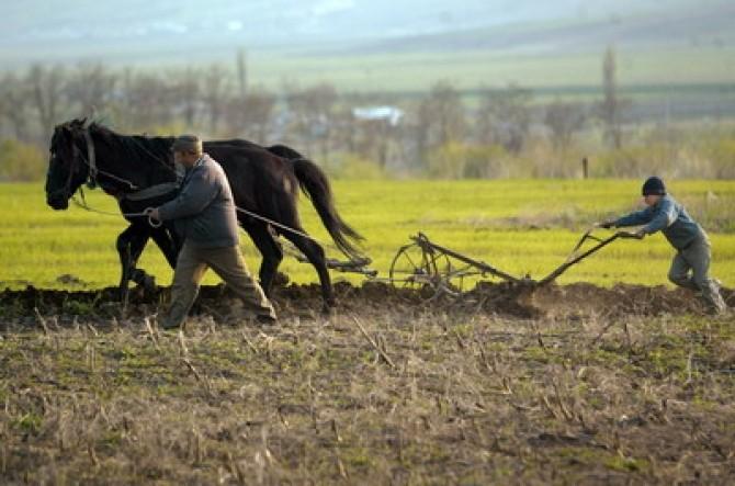 Agricultură