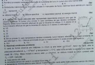 subiecte-fizica (2)
