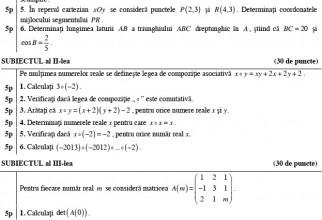 image-2013-08-28-15463338-0-subiecte-matematica-pedagogic