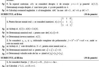 image-2013-08-28-15463669-0-subiecte-matematica-stiintele-naturii