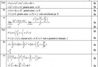 image-2013-08-28-15463706-0-barem-matematica-tehnologic-2