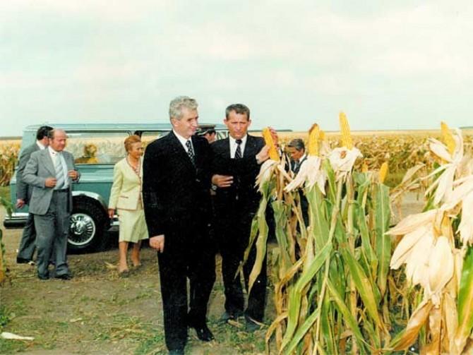 ceausescu-agricultura