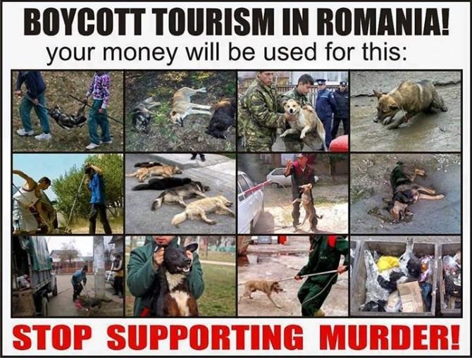 boicotati-turismul-romanesc