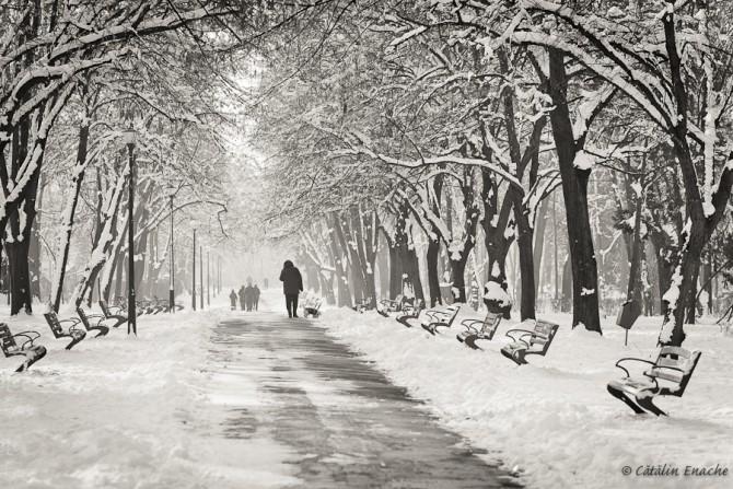 povestiri-de-iarna-povestiri-de-iarna-de-prin-parcuri-adunate-catalin-enache-02