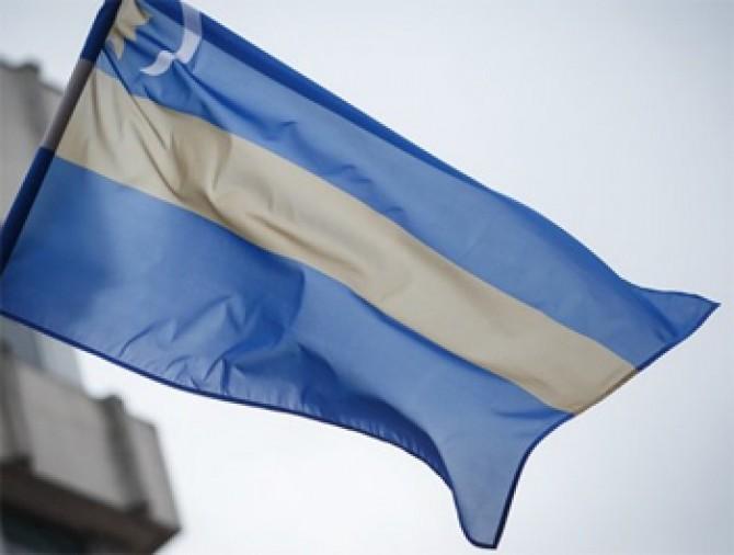 Steag Secuiesc 2
