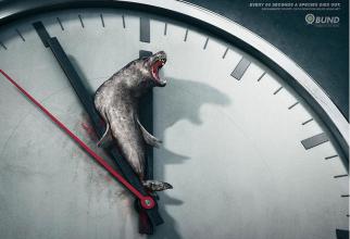 La fiecare 60 de secunde, o specie dispare ...