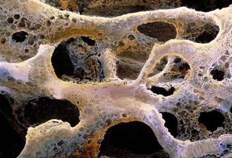 unguent dermatita atopica sapuni