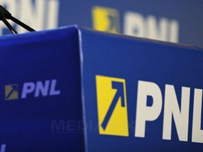 Imagini pentru pnl program