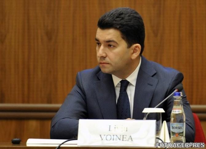 Liviu Voinea, viceguvernatorul (BNR)