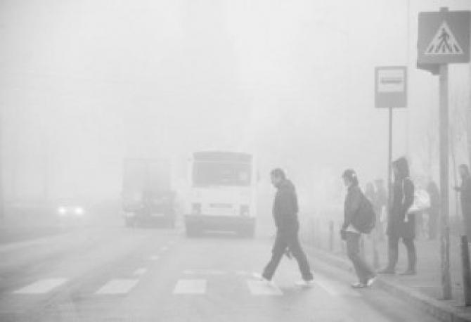 Cod Galben de ceață