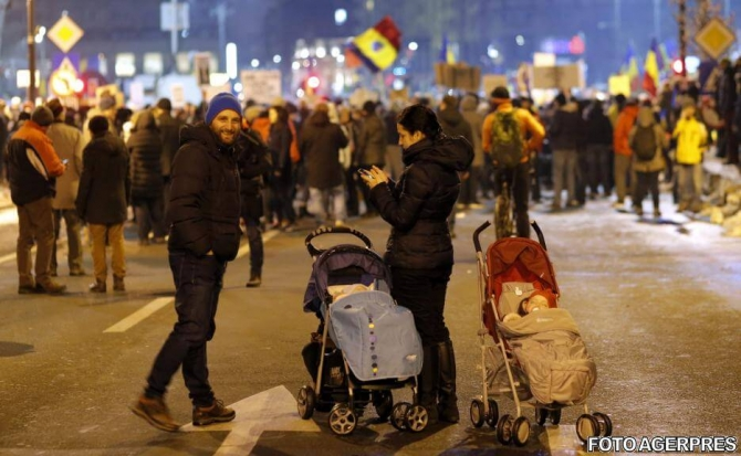 Marșul Copiilor în Piaţa Victoriei Căţeluş Cu Părul Creţ Fură