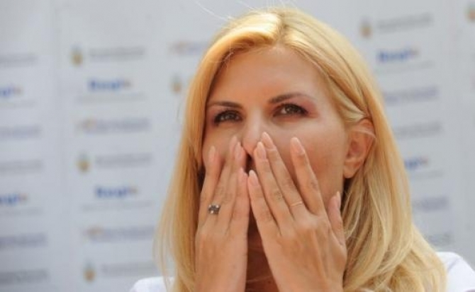 Elena Udrea, dosarul Gala Bute
