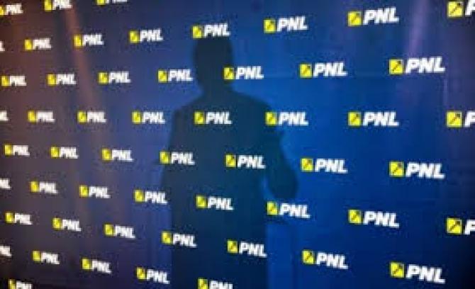 CNCD, numiri. CCR, hotărâre privind sesizarea PNL