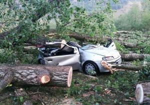 bulz-bihor-cum-arata-campingul-devastat-de-furtuna-foto