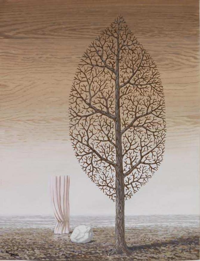 (w670) Rene Magri