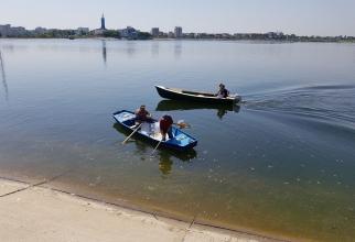 Pesti morti Lacul Morii