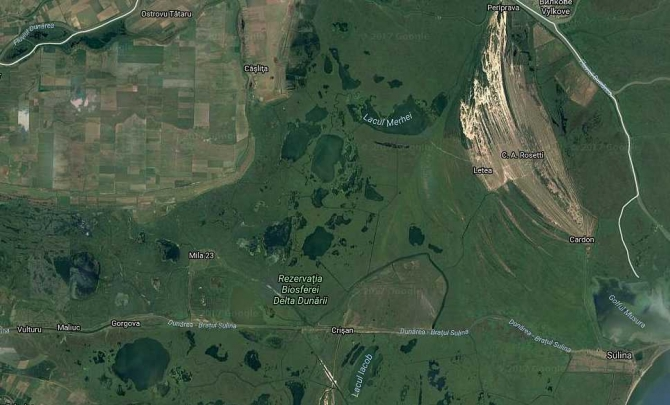 Delta Dunarii. foto: Google view