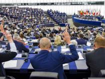 Europarlamentare. ALDE, campanie împotriva naționaliștilor și...