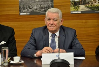 Teodor Melescanu, Romania