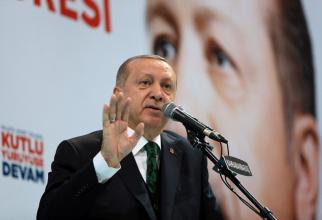 Erdogan, Turcia