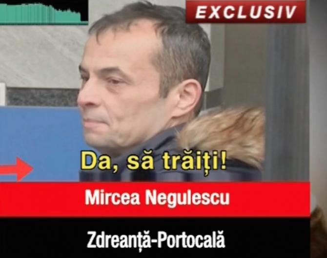 mircea negulescu
