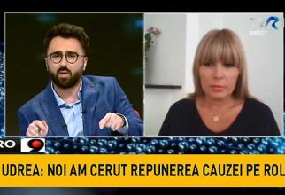 Elena Udrea, Ionuţ Cristache