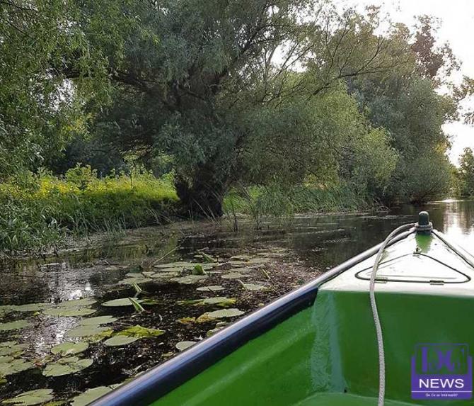 Insule sălbatice în Delta Dunării
