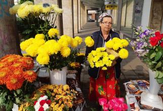 Ce poveste ascunde un colț cu flori din București