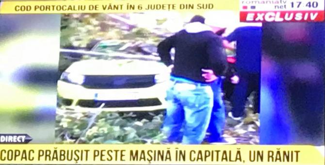 Copac prăbușit peste un taxi în Capitală