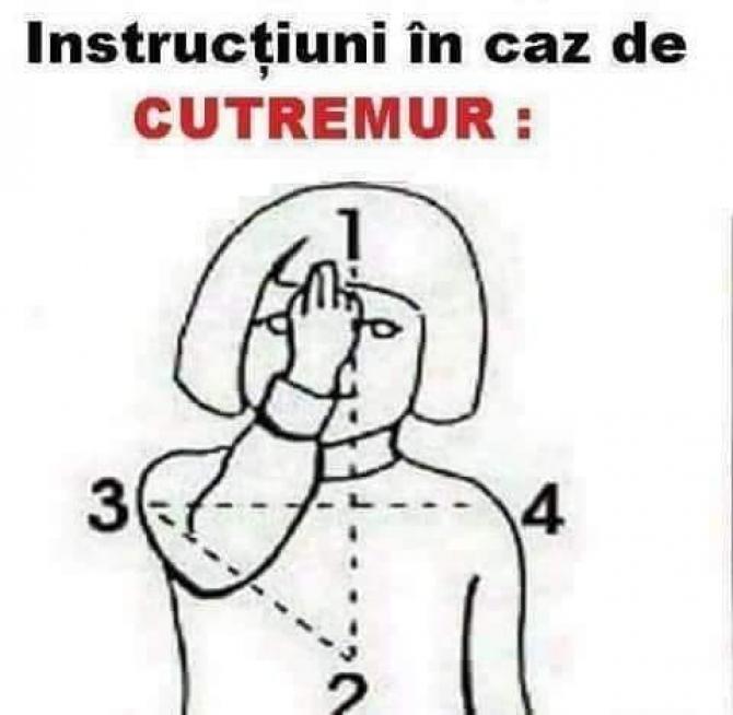Instructiuni cutremur