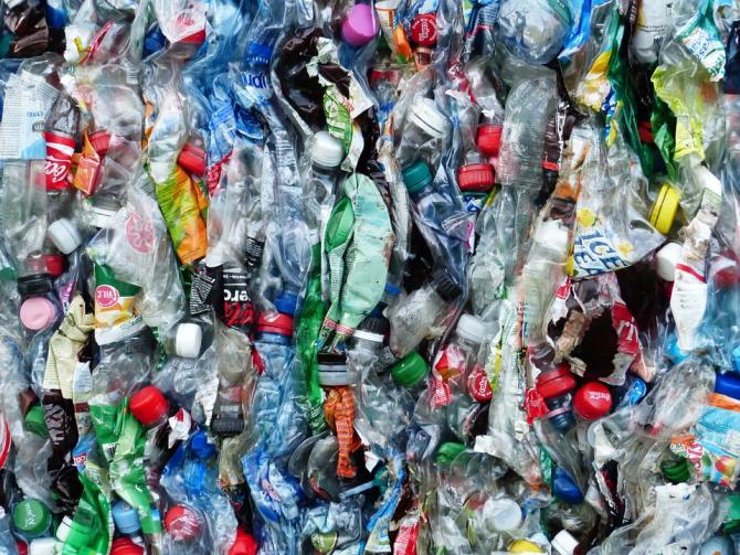 Plastice descoperite în corpul uman
