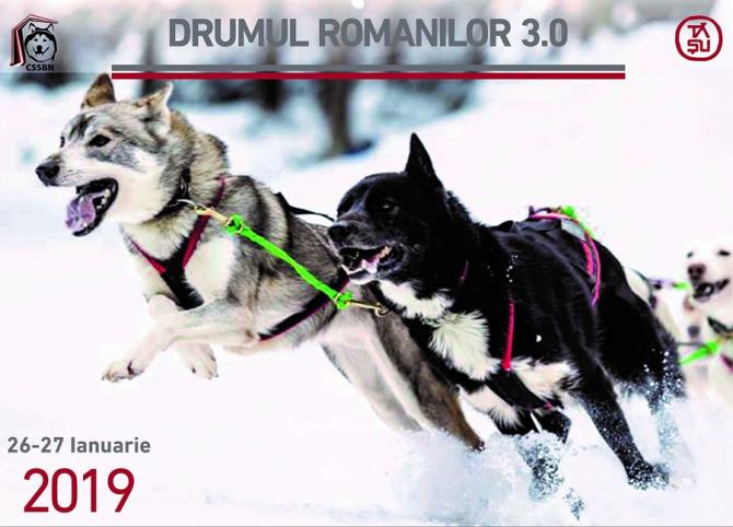 'Drumul Romanilor' - concurs cu câini, în Pasul Tihuța