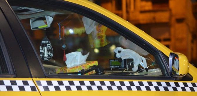 """Taxi și """"maimuța"""". foto ilustrativ, Poliția Română"""