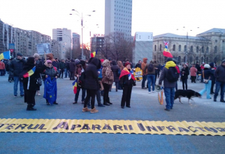 Protest 24 februarie
