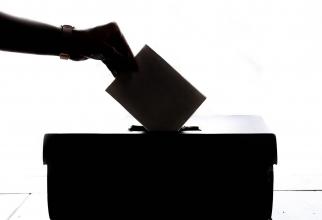 Vot alegeri 2019