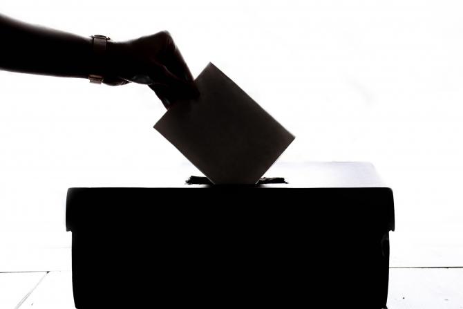Politica - vot