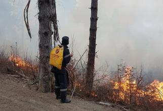 Pompierii încearcă să limiteze incendiul