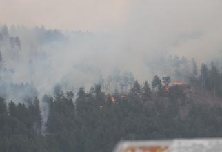Incendiul, la primele ore după declanșare